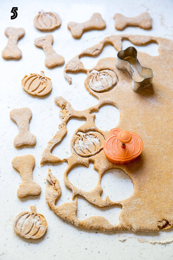 Cutting pumpkin dog treats with cookie cutters