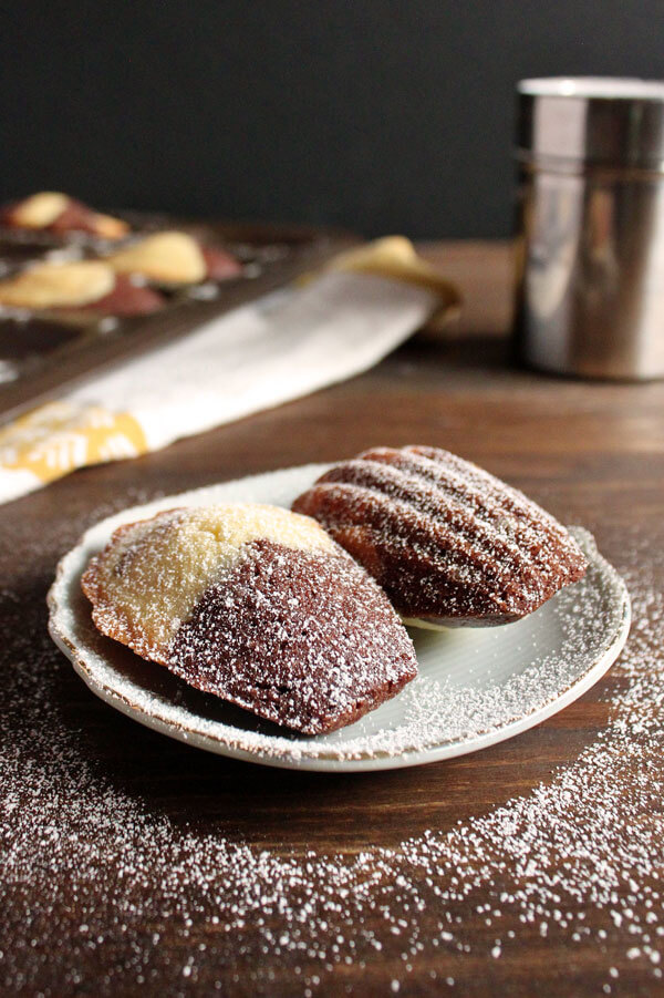 Chocolate Marble Madeleines dusted with powder sugar on a small plate