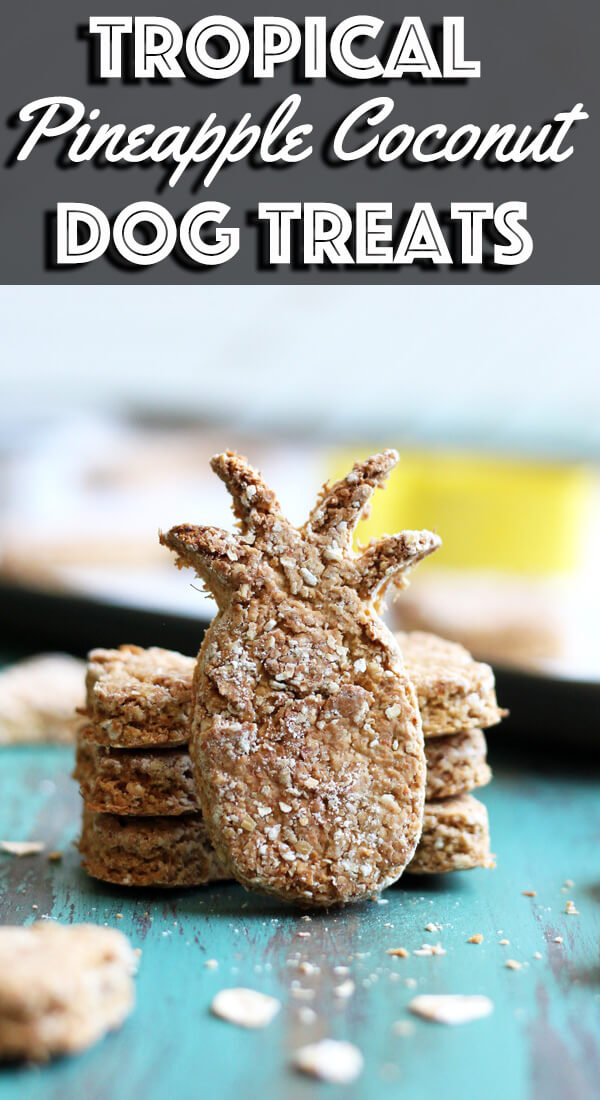 If you can't take your pups on a tropical vacation with you, bring the island vibes to them with these Tropical Pineapple Coconut Dog Treats. Made with fresh pineapple and coconut oil, these delightful treats will have your pups jump for joy. | wildwildwhisk.com #dogtreats