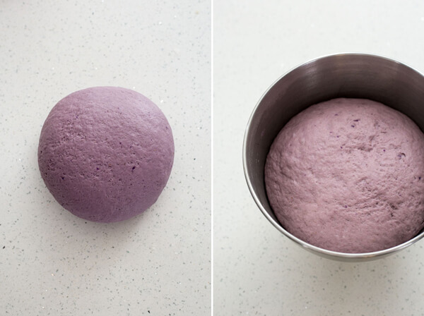 Purple Sweet Potato Dinner Rolls bread dough shaped into ball and allow to rise in a mixing bowl