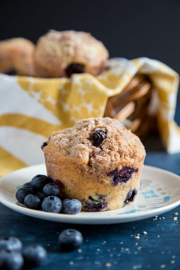 Blueberry muffin on a plate with fresh blueberries scattered around