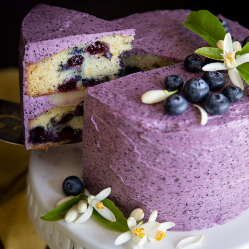 A mini lemon blueberry cake being served